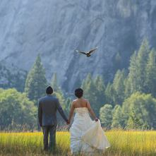 The Schaefers - wedding